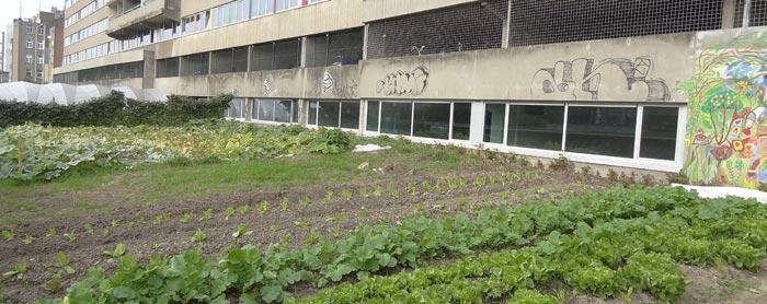 jardin participatif Etterbeek Belgique