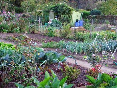 jardin_ouvrier