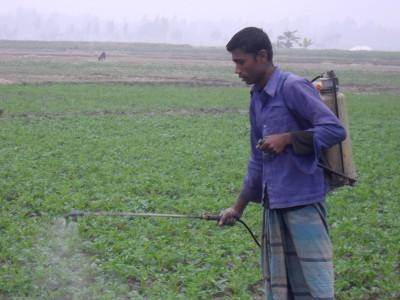 agriculteur pulvérisant des pesticides