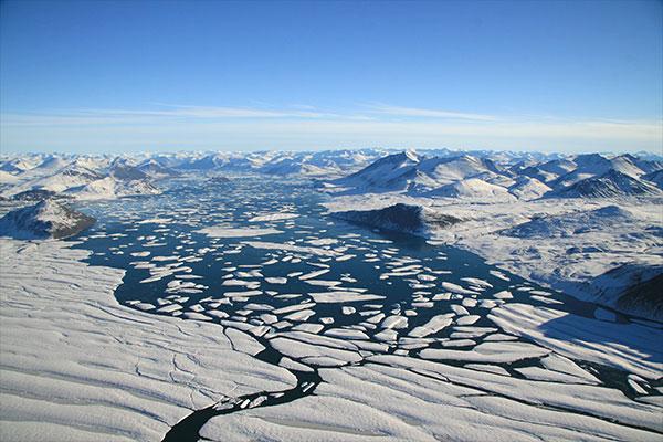 fjord_Disraeli_velage