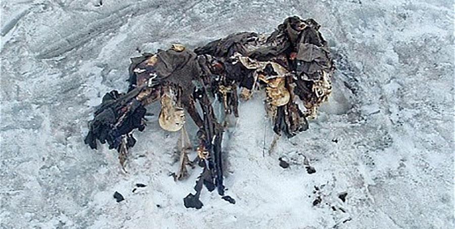 Soldats autrichiens guerre blanche