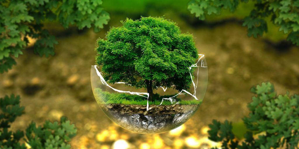 Environnement : pollutions, pressions et nuisances notre