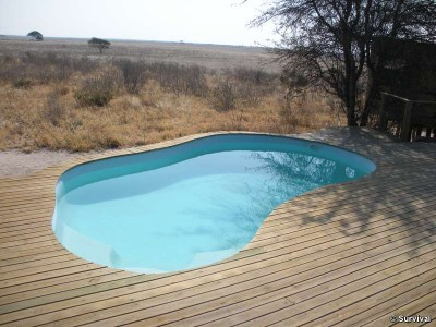 Wilderness_Safaris_piscine