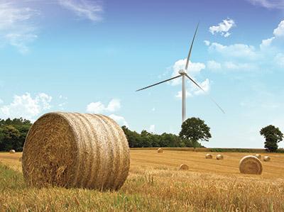 L'énergie éolienne ou l'énergie du vent