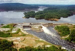 Les conséquences d'un barrage sur les poissons