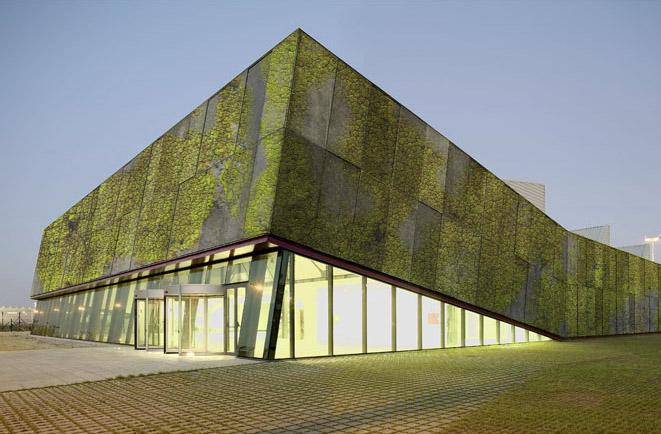 beton_vegetal
