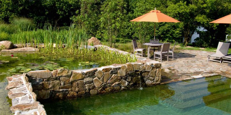 Comment construire sa piscine naturelle avantages et for Tarif piscine naturelle
