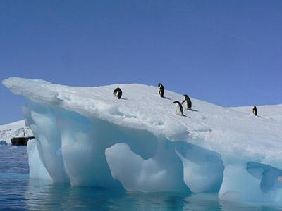 Antarctique_iceberg_manchots