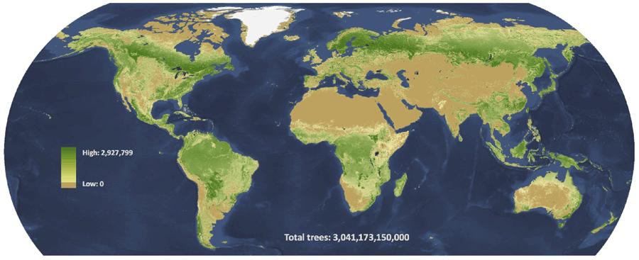 Carte Des Forêts Denses Du Monde | tonaartsenfotografie