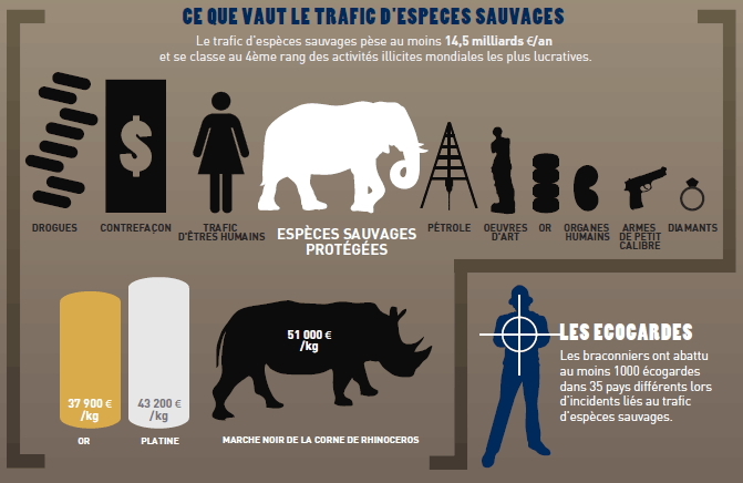 trafic espèces sauvages