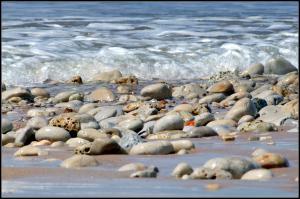 Galets charriés par les marées