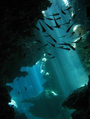 Jeux de lumière dans l'eau