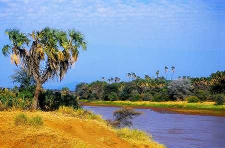 Rivière Ewaso Ngiro
